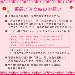 【送料無料】《WEB限定ver.》新春福袋 2017(お楽しみアリの6点セットで3,500円) 089035 (エメフィール)