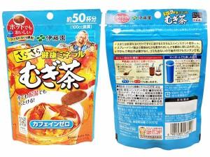 『送料無料』伊藤園さらさら健康ミネラルむぎ茶40g(単品) 【パック ノンカフェイン 麦茶  大麦    粉末】