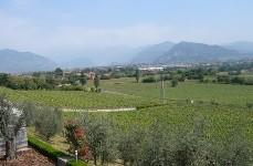 フランチャコルタ ブリュット フェルゲッティーナ NV 750ml 白泡 辛口 和食 イタリア ロンバルディア シャルドネ シャンパン方式 DOCG