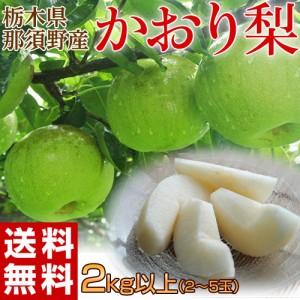 《送料無料》栃木県那須野産「かおり梨」2kg以上 (2〜5玉) ※常温 ○