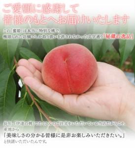 《送料無料》伊達の桃「蜜姫(みつひめ)」 6〜8玉 約2kg ※常温 ☆