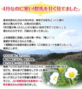 《送料無料》群馬県産 JA利根沼田 おぜあかりん デラックス(8〜15粒) 約400g×2 ※冷蔵 ☆
