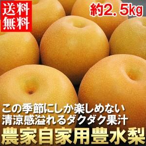 送料無料 梨 ナシ なし 農家自家用 豊水梨 2.5kg(gn)※8月下旬出荷予定
