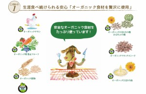 【ソルビダ 】SOLVIDA オーガニック チキン シニア 3.6kg アレルギー対策 アレルギー 送料無料 ドッグフード