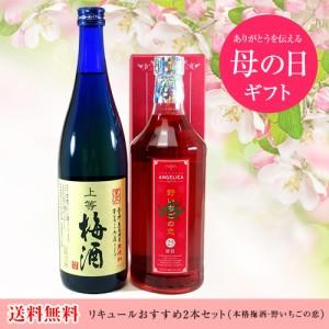 リキュールおすすめ2本セット(本格梅酒・野いちごの恋)