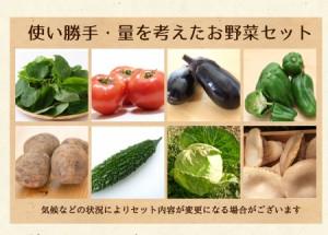 有機JAS認定野菜 特別栽培野菜 野菜セットLサイズ 11〜13品目 送料無料