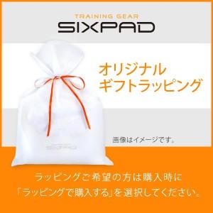 シックスパッド(SIXPAD) ツインボディセット EMS ems 筋肉 ダイエット 筋トレ 腹筋 正規品 保証付き