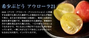 ≪送料無料≫長野県産 飯塚さんのぶどう『アウローラ21』1房 700g以上 ※常温 ☆