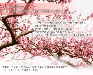 《送料無料》和歌山 紀の里産「嶺鳳桃」 約2kg(6〜8玉)化粧箱入り ☆