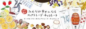 新商品!【冬季限定】フェアトレード チョコレート ビターザクロ50g /オーガニック