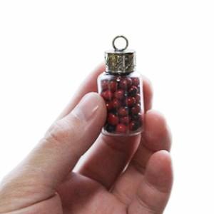 ワイルーロ(幸運を招く木の実) 南米雑貨 開運雑貨 金運アップ 風水雑貨 メール便対応 ギフト ラッピング無料