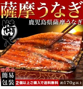 うなぎ 蒲焼き 国産 鰻 蒲焼 1尾 約170g 2パックご購入で送料無料