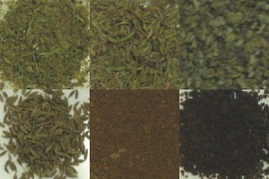 ブラジル:ダテーラドリップ式 10g 1P (7Pセット) ドリップコーヒー専用ハーブ&スパイス6種類×1gセット