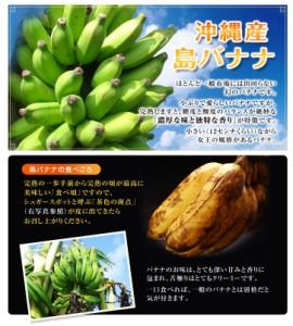 沖縄産 「島バナナ」 1〜3房 約1kg ☆
