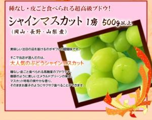 《敬老の日限定》長生きフルーツバスケット 3種5品 ※送料無料 ○