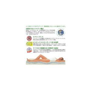 【全国送料無料】マニフレックス メッシュウィング 三つ折りタイプマットレス セミシングル(色:ミッドブルー)