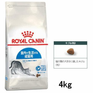 【ロイヤルカナン】室内猫用 インドア  4kg (1歳から6歳まで)
