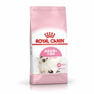 【ロイヤルカナン】 子猫用 キトン (生後4〜12ヵ月齢) 2kg こねこ キティ コネコ ベビー