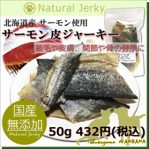 犬用国産無添加サーモン皮ジャーキー 50g 北海道産さけ使用 アレルギー体質のペットも安心 栄養 魚 新鮮 帝塚山 WANBANA ワンバナ