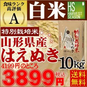 【送料無料】 28年産白米 特別栽培米 山形はえぬき10kg【北海道沖縄へは別途送料540円】