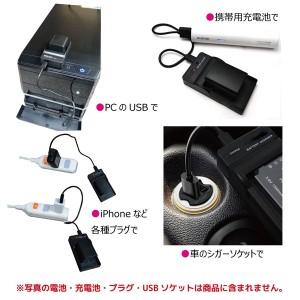 Panasonic パナソニック DMW-BCM13 互換バッテリー2個と充電器USBチャージャーDMW-BTC11 DMC-TZ40 DMC-FT5