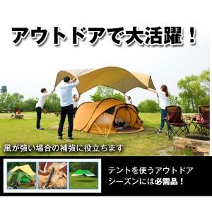 テント ペグ 釘 杭 20cm 4本セット キャンプ用品 ペグセット ステンレス テント タープ 設営用品 アウトドア 固定 ad096