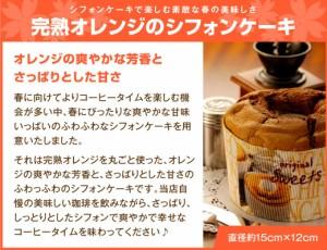【澤井珈琲】4月の限定セット!春真っ盛りの今を満喫できるような素敵なコーヒー&スイーツの福袋
