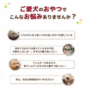 犬 おやつ お試しセット 選べる無添加おやつ(18種類から3つ選べる) 【お一人様1回限り】※メール便配送・代金引換便不可・同梱不可