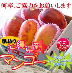 \1箱あたり3,333円!/《送料無料》訳有り『沖縄産マンゴー』 大ボリュームの約1.5kg(3〜6玉)×3箱 合計約4.5kg ※常温○