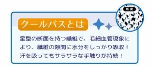 ★限定特価2017SS!COOLPASSニットワッフル敷パットセミダブル