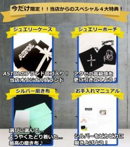 シルバー925【FF10】ティーダ着用ネックレス レプリカ★ファイナルファンタジー10  【特典付】