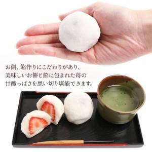 送料無料 季節限定 紅ほっぺ いちご大福(こし餡・ミルク餡) 6個入り 苺 イチゴ 和菓子
