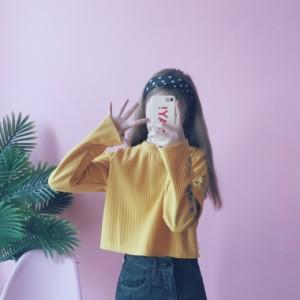 [2017秋冬/新作トップス ブラウスTシャツ花柄厚手暖かいレディースゆったり長袖瘦せ見せ三色入