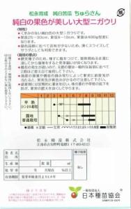 松永種苗 純白ゴーヤー ちゅらさん 約9粒【郵送対応】