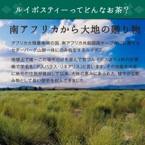 【澤井珈琲】グリーンルイボスティー3g×20袋(ノンカフェイン/ティーバッグ/紅茶)