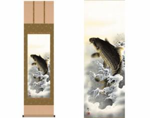 【和室 インテリア 掛け軸】受注生産品 掛軸「大昇鯉」森山観月 筆【gag qof nqa】