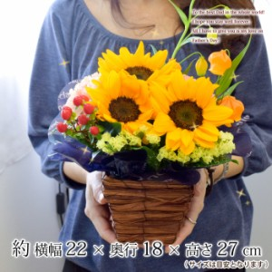 父の日 花 ギフト 送料無料 選べる大輪 ひまわり か 寄せ植え&選べる3種類 和菓子・老舗のお蕎麦・和スイーツ から選べるセット