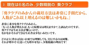 和歌山・有田産 高級みかん『葵クラブの蜜柑』 特選品 1箱 約3キロ S〜2Sサイズ ※3箱まで同梱可 常温 ☆