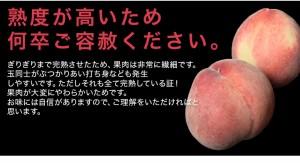 桃 もも 佐賀県産 JAからつの「完熟ハウス桃」約1kg 4〜5玉 ※常温 ☆