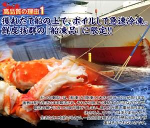 ≪送料無料≫「特大ボイルタラバ蟹」ロシア産 1肩 約800g(2人前相当)  ※冷凍  ★