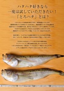 鳥取県産 とろハタ丸干し 2尾120g ※冷凍  ○
