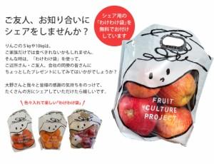 《送料無料》大野農園の雹(ひょう)害サンふじリンゴ L〜4Lサイズ約10kg (わけわけ袋 4枚入り)※常温 ☆