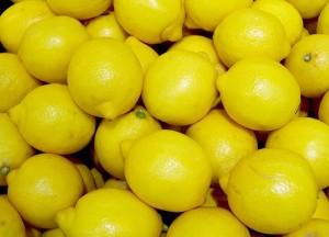☆畑直送新鮮野菜☆こだわり有機栽培お試しセット7品+果物をプレゼント‼