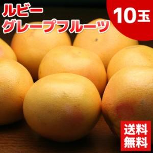 送料無料 グレープフルーツ(ルビー)10玉/フルーツ/くだもの(gn)
