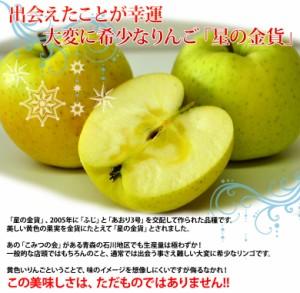 《送料無料》青森県産 「星の金貨」 9〜11玉 約3キロ【特A】産地直送 ☆