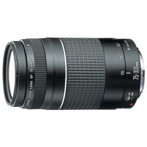 【中古 1年保証 メンテナンス済】 Canon EF 75-300mm F4-5.6(3)USM