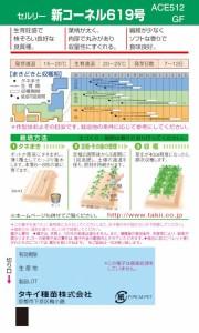 タキイ種苗 セルリー 新コーネル619号 0.9ml【郵送対応】