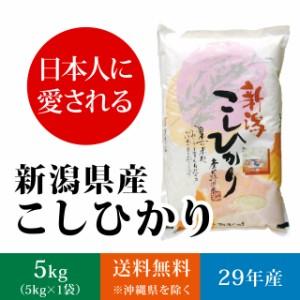 【日本に愛される】新潟県産コシヒカリ 白米 5kg(5キロ×1袋)【送料無料】《 29年産 夢 お米 5kg 安い 5キロ 》