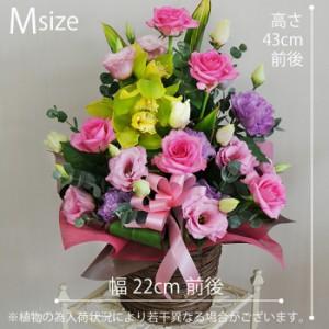 【送料無料】カクテルミックス M 誕生日 お祝 送別会 退職祝い 翌日お届け