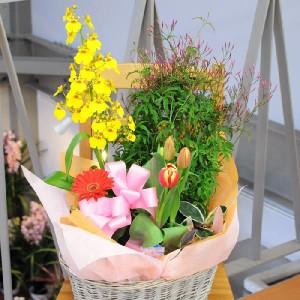 寄せ鉢 プリティーミックス 誕生日 お祝のお花 プレゼント 送別会 退職祝い花ギフト 花宅配エーデルワイス花の贈り物